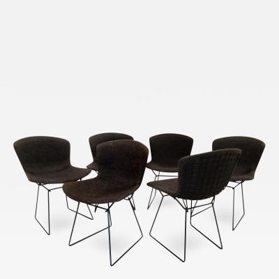 Harry Bertoia Set of Six Vintage Bertoia Chairs
