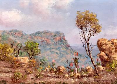 Henry Bredenkamp View of South Africa