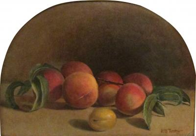 Hiram Dwight Torrey Peaches