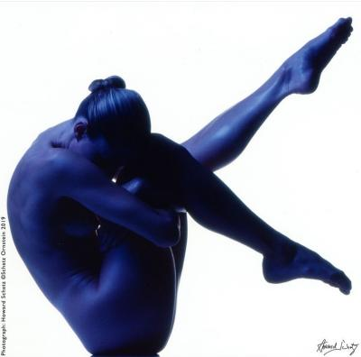 Howard Schatz Blue Study