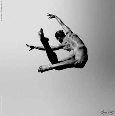 Howard Schatz Dance Study Eric Hoisington
