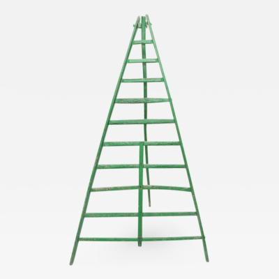 Huge Fruit Picking Ladder