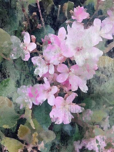 Irena Orlov A garden in PINK bloom