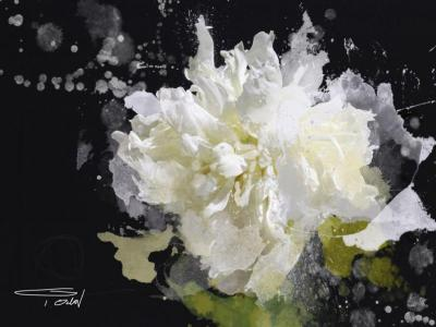 Irena Orlov Blow Flower Print Mixed Media 60 x 40