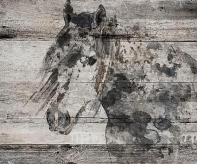 Irena Orlov Dark Grey Horse 60x40 Mixed Media