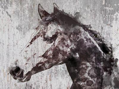 Irena Orlov Dust Horse 60x40 Mixed Media