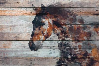 Irena Orlov Fire Horse 60x40 Mixed Media on Canvas