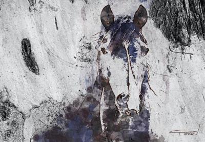 Irena Orlov Mixed Media on Canvas Mustang Horse 60x40