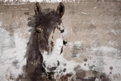 Irena Orlov Roy Moore Horse 40x60 Mixed Media on Canvas