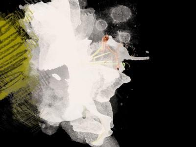 Irena Orlov White and Black Flower Mixed Media