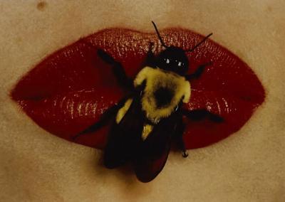 Irving Penn IRVING PENN BEE ON LIPS CLOSED MOUTH
