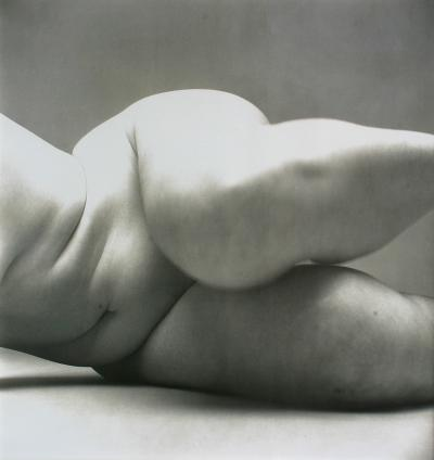 Irving Penn Nude No 57