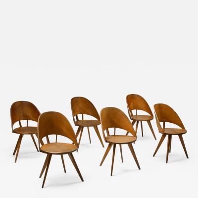 Italian Plywood Dining Chairs 1940s
