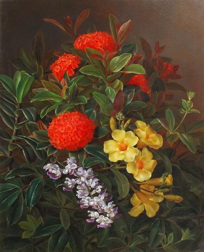 Johan Laurentz Jensen Allemanda Ixora and Orchids