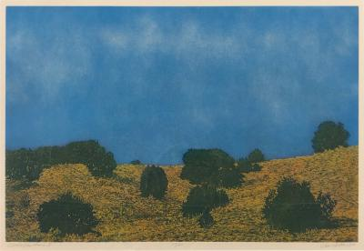 John Hogan Cloudy Day Prairie II