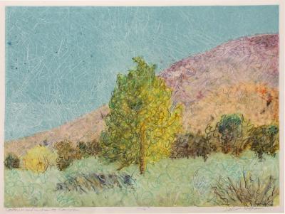 John Hogan Cottonwoods in Jemez Canyon