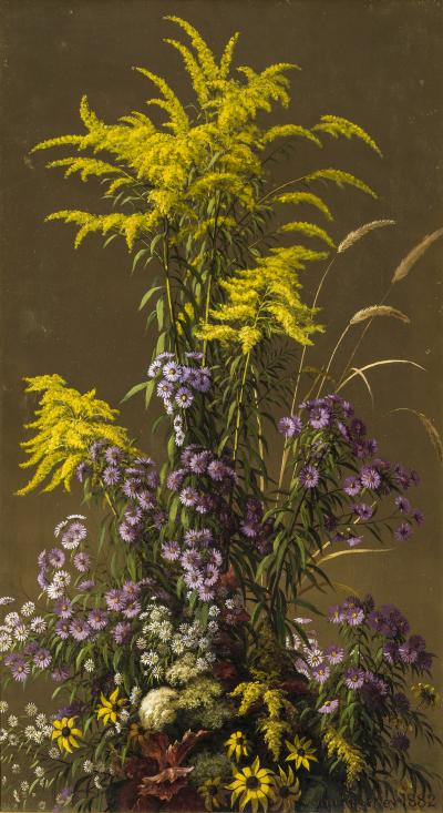 John Ross Key Goldenrod and Other Wildflowers