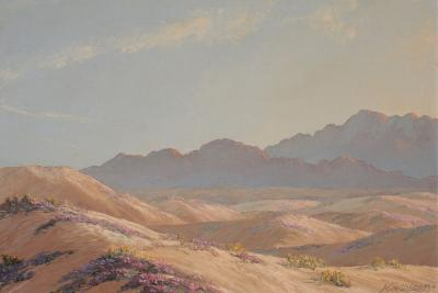 John William Hilton Desert Dunes