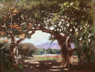 Joseph Pierre Birren The Live Oak Arch