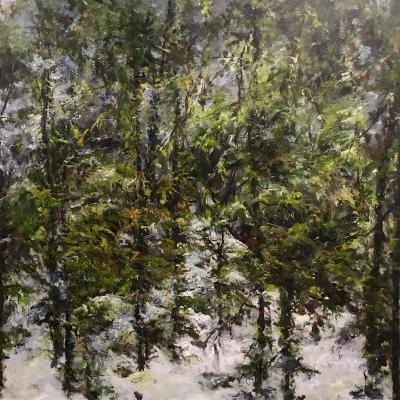 Judy Cheng Trail