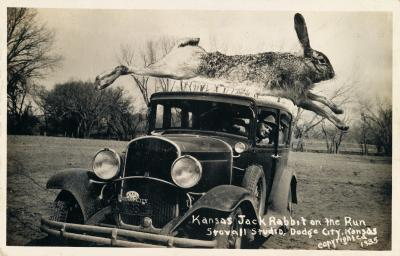 Kansas Jack Rabbit on the Run 1935