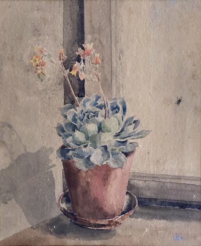 Kathleen Kay L Talbot Pink Bellflowers