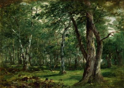 John Frederick Kensett Woodland Interior with Stream