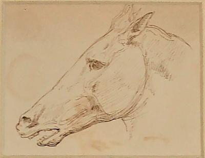 L on Cogniet Powerful Study Of A Horses Head By L on Cogniet