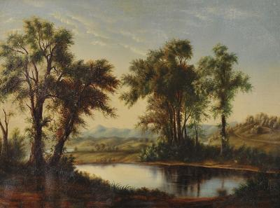 Landscape view of trees along river
