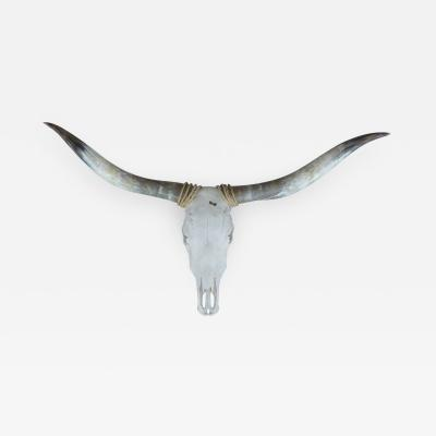 Large Southwestern Steer Mount with Horns