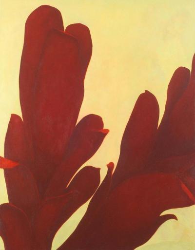 Laurie Flaherty Dark Plant