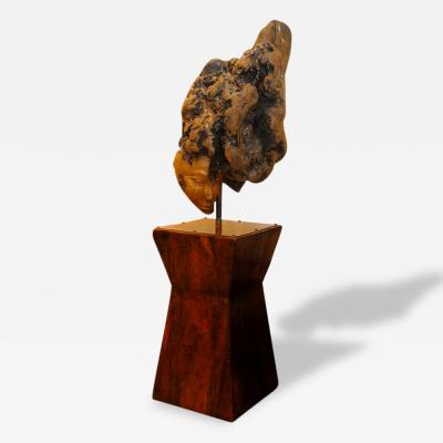 Laurie Tucker Root Sculpture With Pedestal By Laurie Tucker