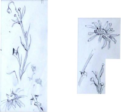 Leonard Foujita Tsuhugaru Foujita Flowers sketches Original Drawings 1957