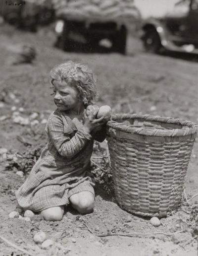 Lewis Wickes Hine Child Picking Long Island Potatoes ca 1912