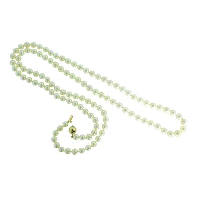 Long Strand of Akoya cultured Pearls