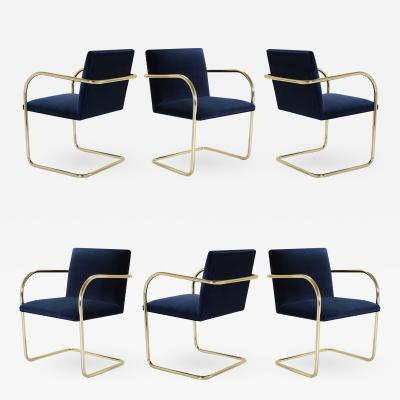 Ludwig Mies Van Der Rohe Brno Tubular Chair in Navy Velvet Polished Brass Set of 6