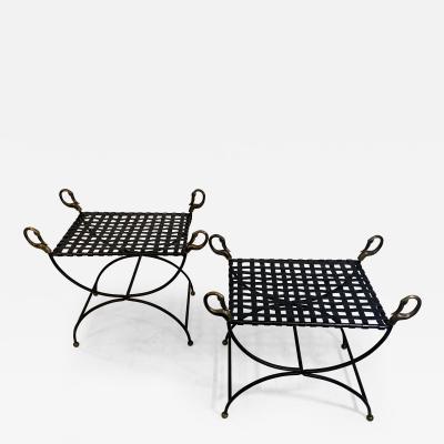Maison Jansen MAISION JANSEN BLACKENED STEEL AND BRONZE SWAN HEAD BENCHES