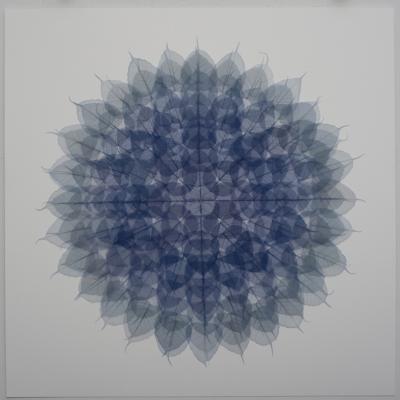 Mandala Violet 48