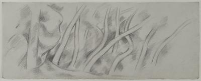 Marsden Hartley Tree Study