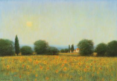 Mary Sipp Green Sunflower Fields Near Cortona