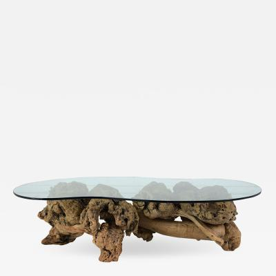 Mid century Organic Form Tree Root Coffee Table