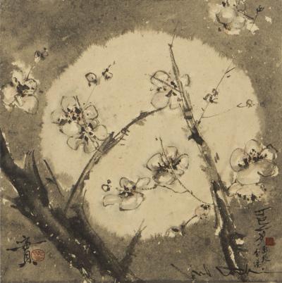 Minol Araki Flowering Plum Branches