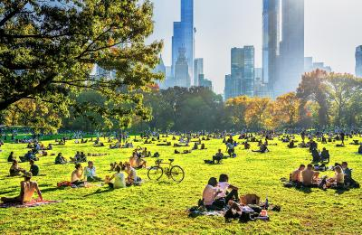 Mitchell Funk Sun Bathers Central Park Sheep Meadow with Golden Light