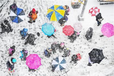 Mitchell Funk Umbrellas in the Snow