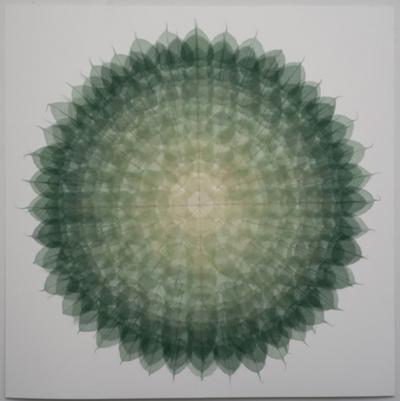 Miya Ando Mandala Dark Green 48
