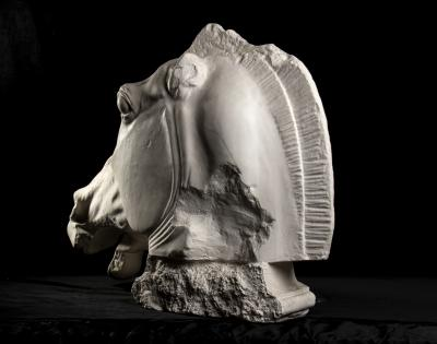 Monumental Cast Sculpture of Horse Head After the Antique at British Museum