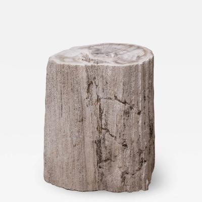 Natural Petrified Wood Side Table