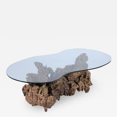 Organic Burl Wood Freeform Coffee Table