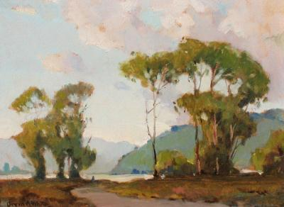 Orrin Augustine White Eucalyptus Grove