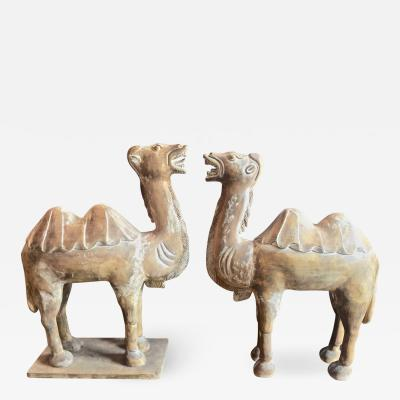 Pair Large Antique Chinese Tang Style Carved Camels